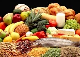 Питание - важнейший физиологический процесс, необходимый для жизни